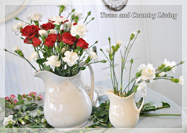 Red Roses and White Carnations