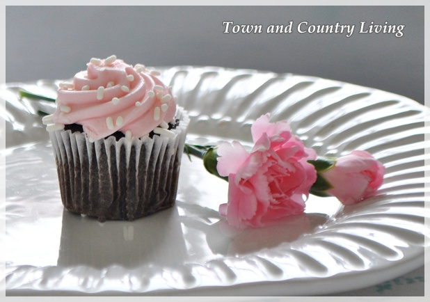 Cupcake and Carnation