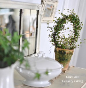 Decorating with Topiaries and Houseplants