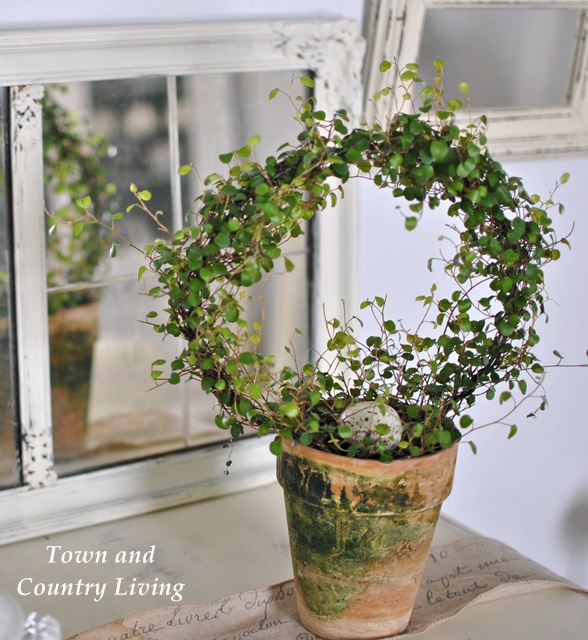 Decorating With Topiaries And Houseplants Town amp Country