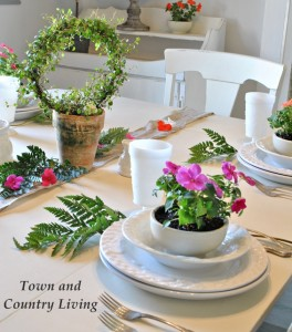 Create a Garden Table Setting with Impatiens