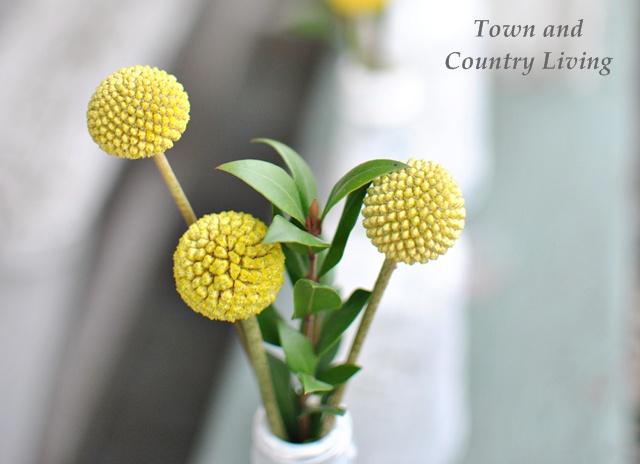 Yellow PomPom Flowers