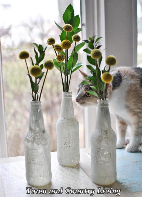 Trio of Yellow Pom Flowers