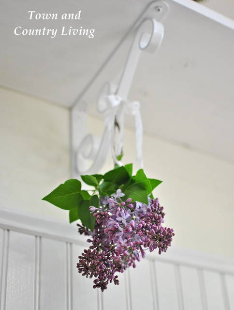 Hanging lilac bunch