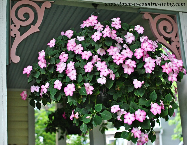 Hanging basket of impatiens on a summer farmhouse porch