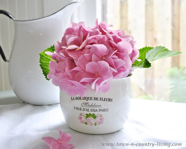Pink hydrangea in a French enamel pot - Town and Country Living blog