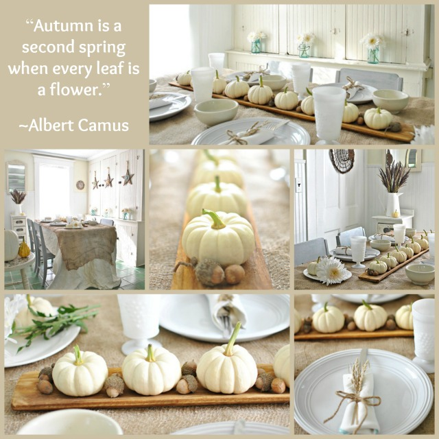 Autumn decorating with baby boo pumpkins town country