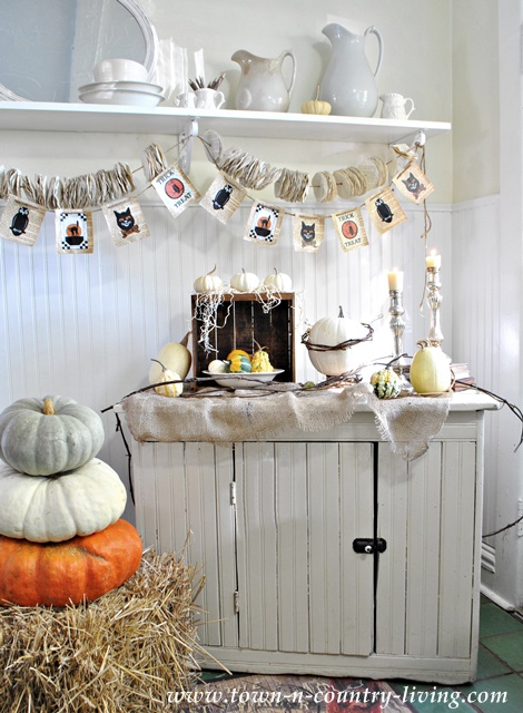 Halloween decorating at Town and Country Living