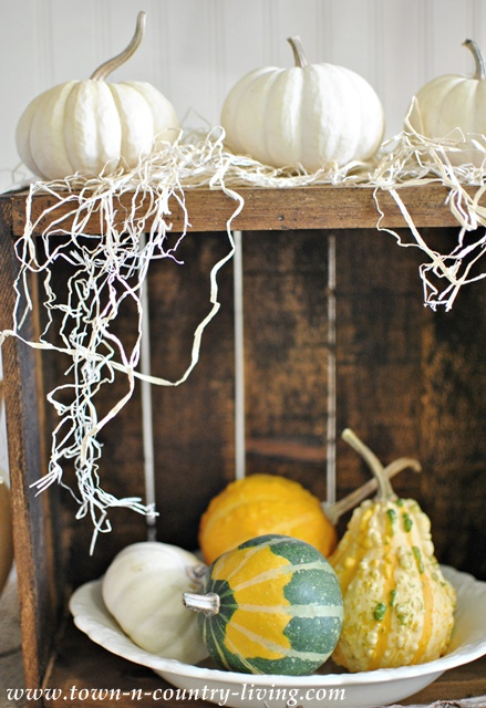 Gourd display via Town and Country Living