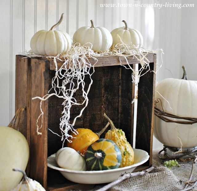 White Baby Boo Pumpkins and Gourds via Town and Country Living
