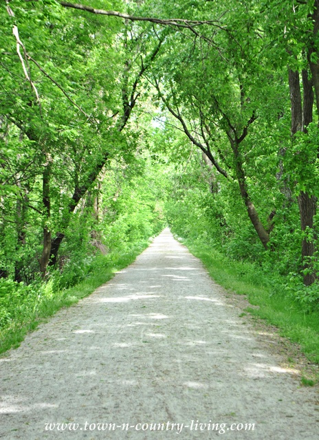 Great Western Trail at Leroy Oakes Forest Preserve