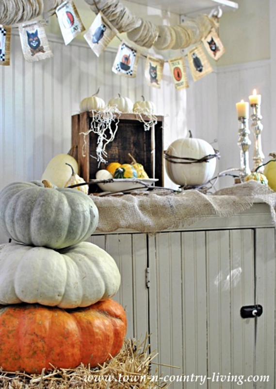 Halloween Banner and Gourds