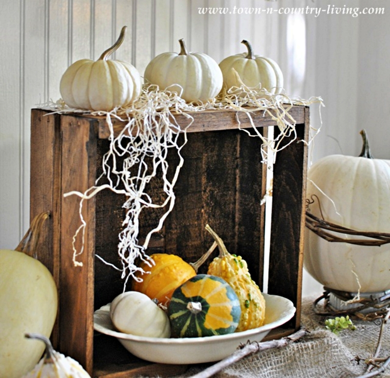 Fall Gourds in a Wooden Crate