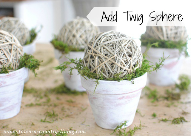 Twig Spheres on Mossy Pots