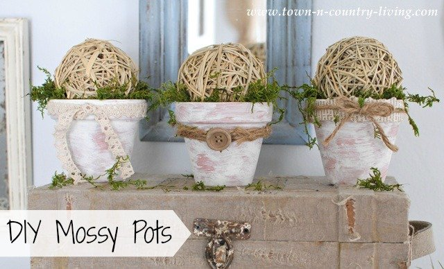 DIY Mossy Pots at Town and Country Living