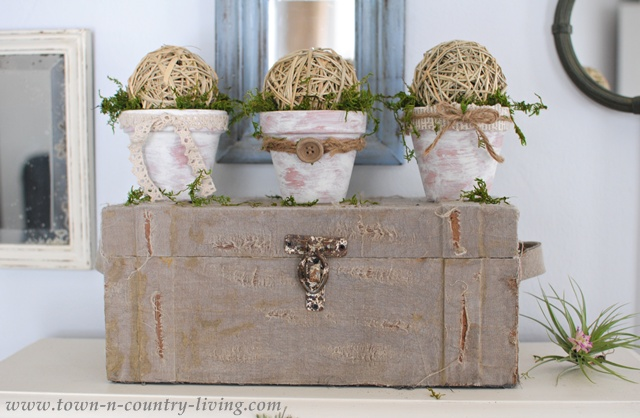 Trio of Mossy Pots at Town and Country Living