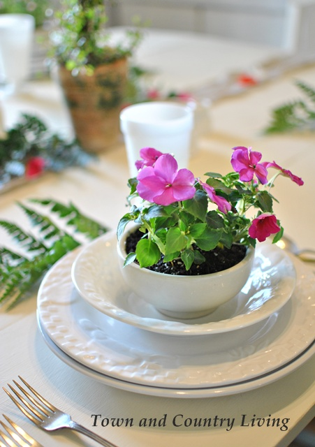Pink Impatiens in a White Ironstone Bowl