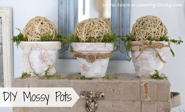 DIY Mossy Pots via Town and Country Living