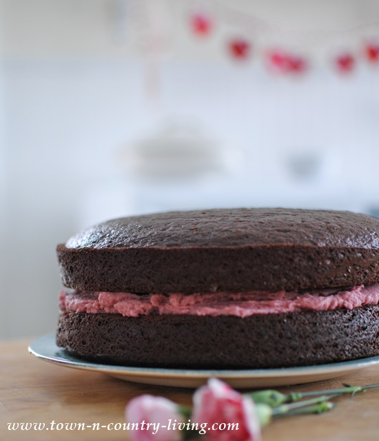 Dark Chocolate Cake with Raspberry Buttercream Frosting