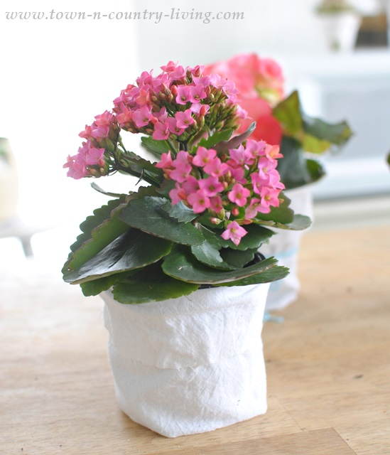 How to create a shabby chic garden pot