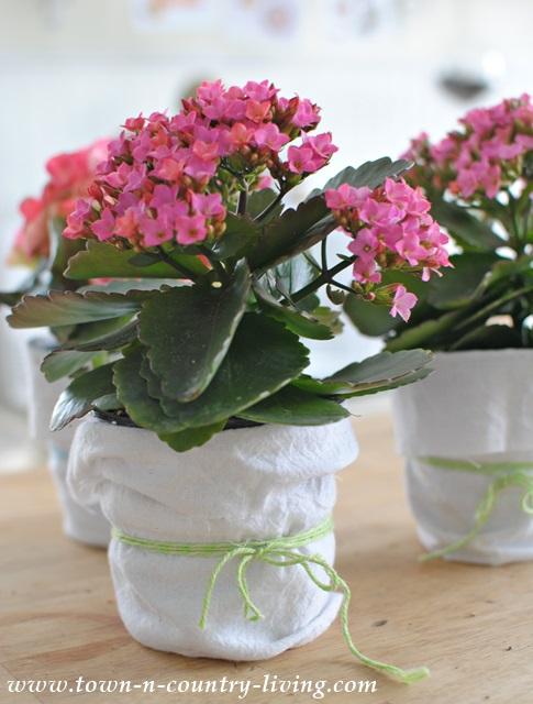 DIY Shabby Chic Garden Pots