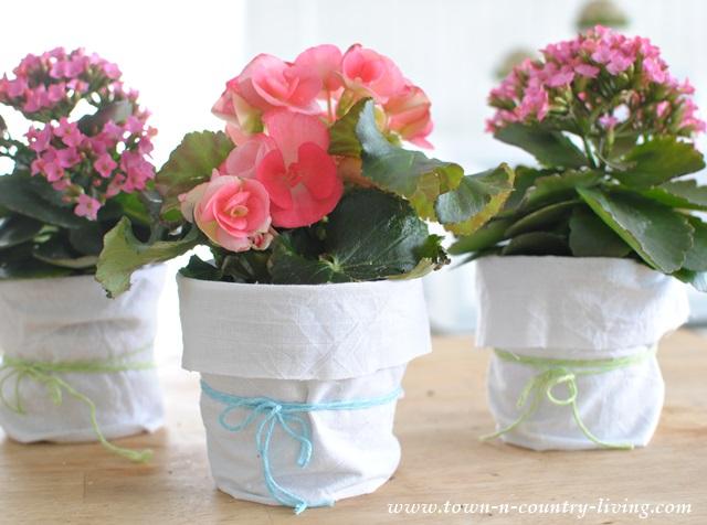 Shabby Chic Garden Pots