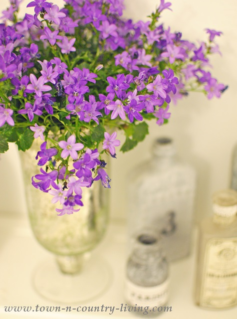 Campanula in Mercury Glass Vase