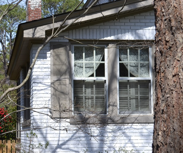Cottage in the Woods with Country Shutters and Lace Curtains