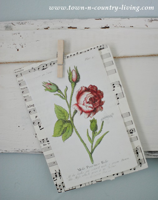 Barn Board with Botanical Prints