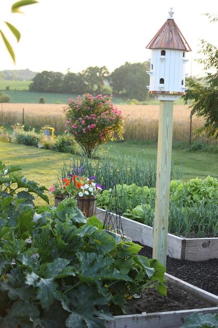 Vegetable Garden at Stone Gable Blog