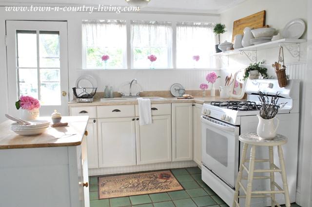Pink Hydrangeas in Summer Kitchen
