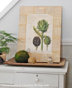 DIY Botanic Print Art Project