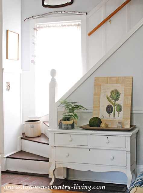 DIY Botanic Art Print Project on a Shabby Chic Dresser