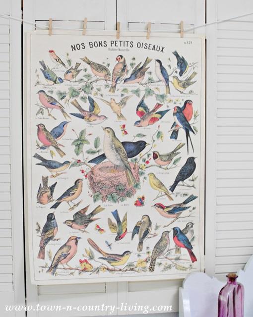 Flea Market Bird Poster