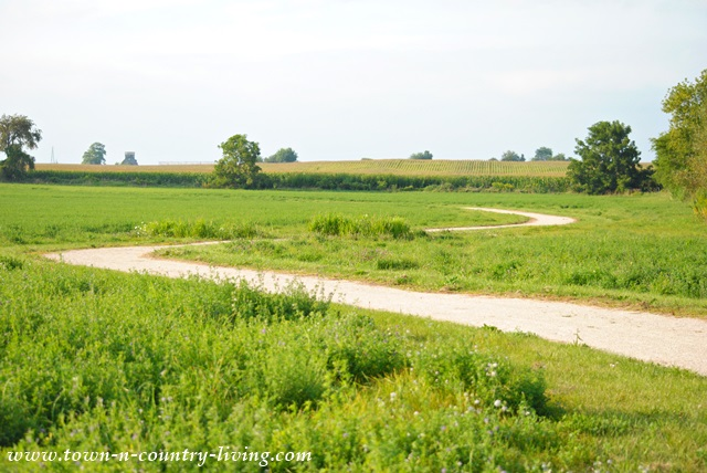 Gravel path through meadow to Elburn Forest Preserve in Illinois