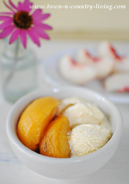 Honey Lavender Peaches served with Vanilla Bean Ice Cream. Mmm good!