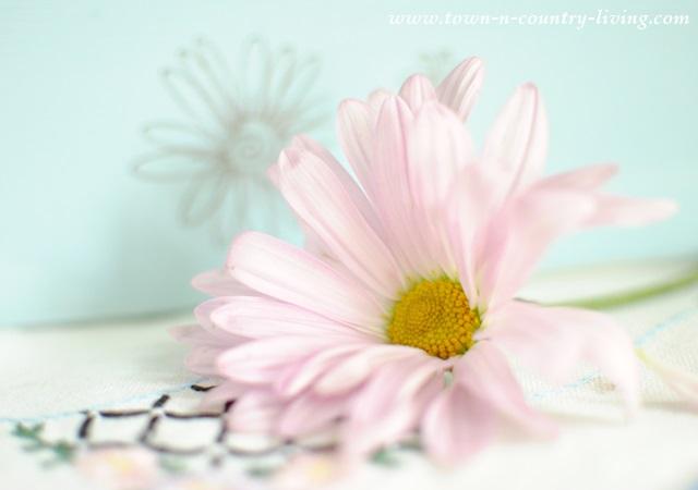 Lavender Mum from Late Summer Flower Arrangement
