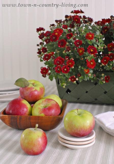 Jonamac apples and mums