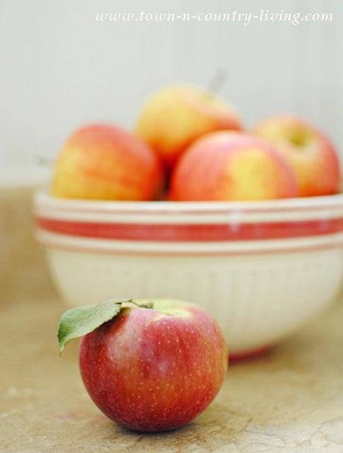 Gala Apples in a Vintage Bowl