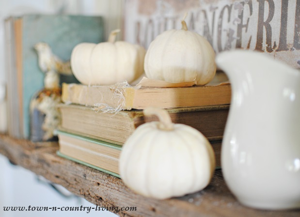 Display of Baby Boos and Vintage Books on Rustic Shelf