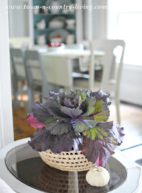 Ornamental Kale in a Fall Home Tour