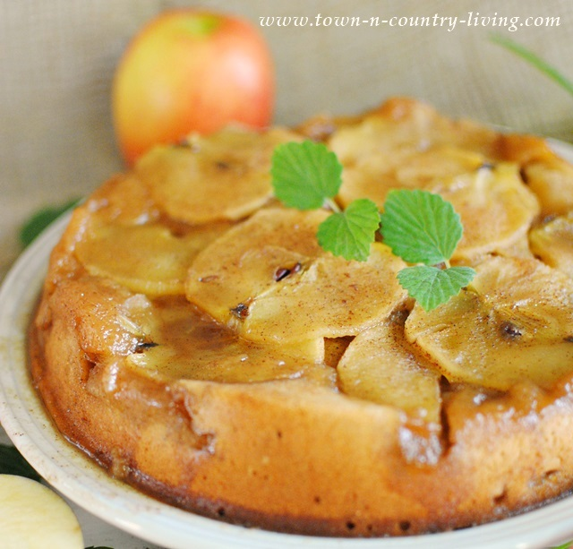 Yummy and Comforting Apple Upside Down Cake