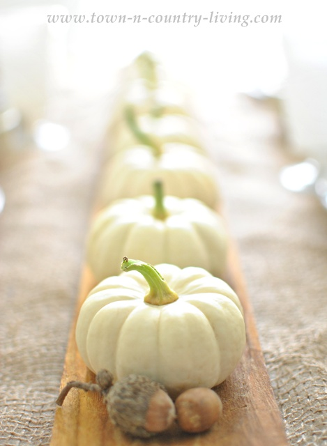 DIY Home Decor - Baby Boo Pumpkins lined up on a French bread board create a sweet and simple centerpiece