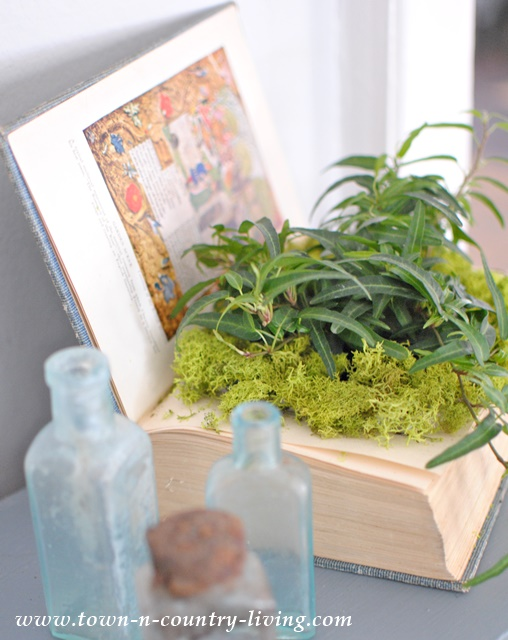 DIY book planter you can make in under an hour.