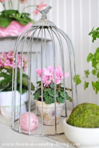 Spring Vignette with Pink Flowers and Fresh Greens