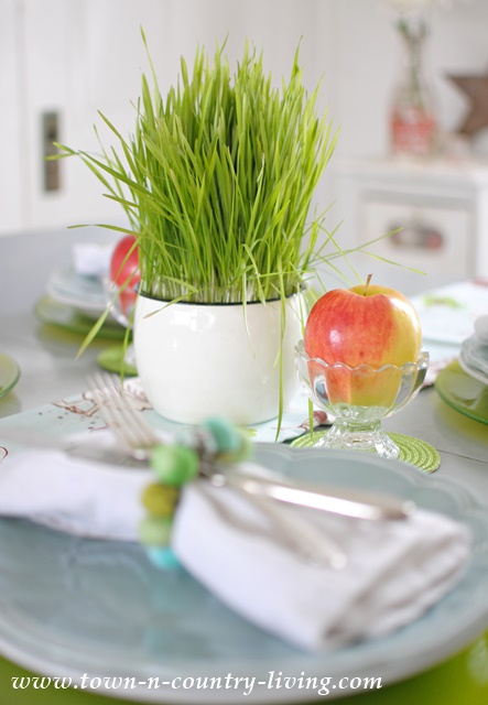 Farmhouse Style Spring Table Setting