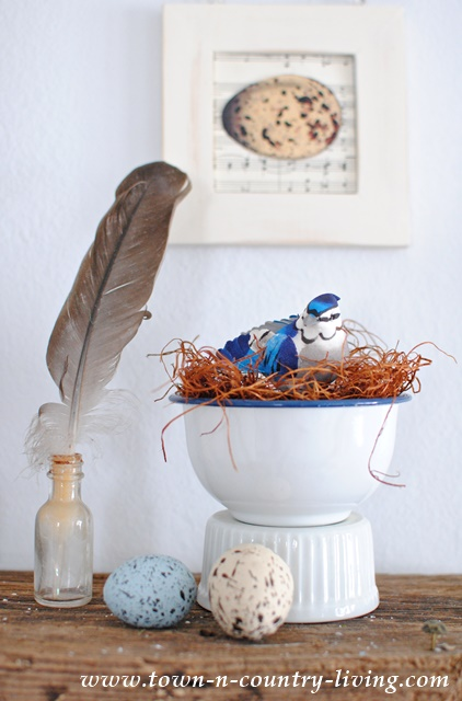 Spring Vignette with Birds and Nests