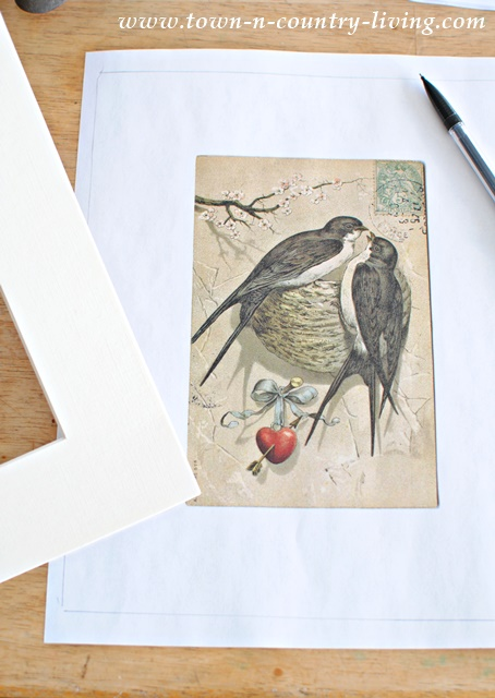 Create bird prints for your spring decor using free bird printables.