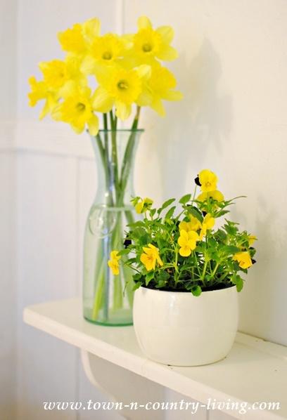 Daffodils and Pansies on a Farmhouse Bathroom Shelf