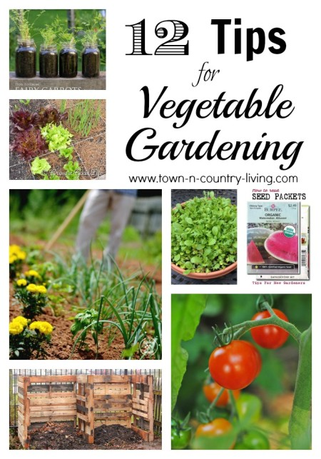 12 Tips for Vegetable Gardening